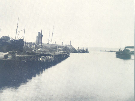 General view of the Docks 1898